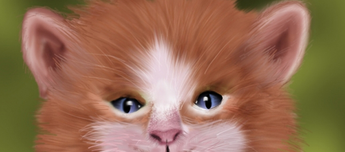 Draw Realistic Animal Furs using Photoshop