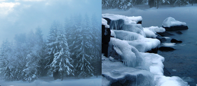 Create a Super Natural Snowing Scene