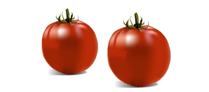 Realistic 3D Tomato Creation