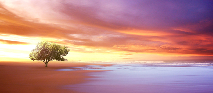 Create a Beautiful Natural Sunset Scenery