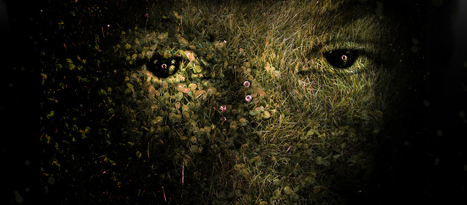 Create a Special Grassy Effect on a Human Face