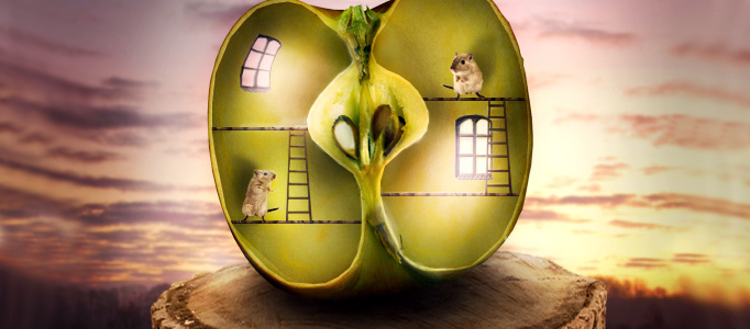 Create a Funny Apple House in Photoshop