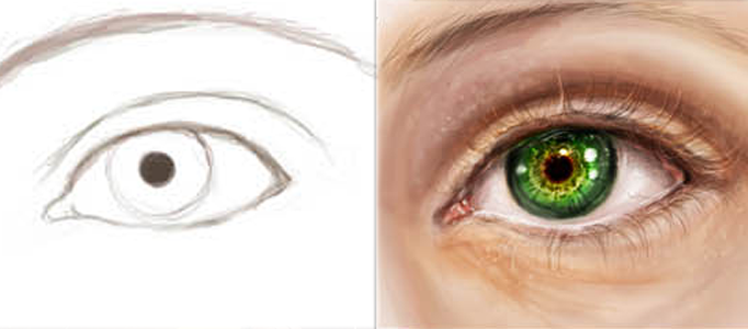 Drawing a Realistic Human Eye
