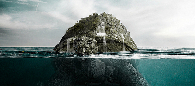 Create a Turtle Swimming in the Ocean