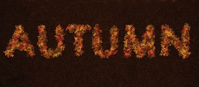 Making a Text Effect using Natural Leaves