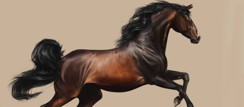 Digital Painting for a Realistic Horse