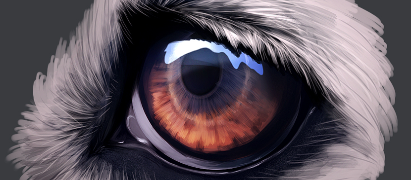 Create a Realistic Eye Nicely