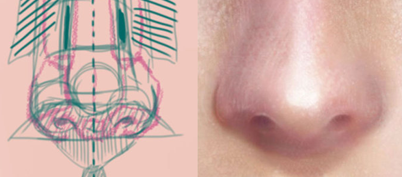 Drawing a Realistic Nose Tutorial