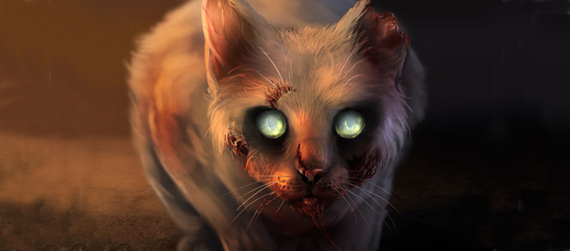Manipulating a Zombie Cat