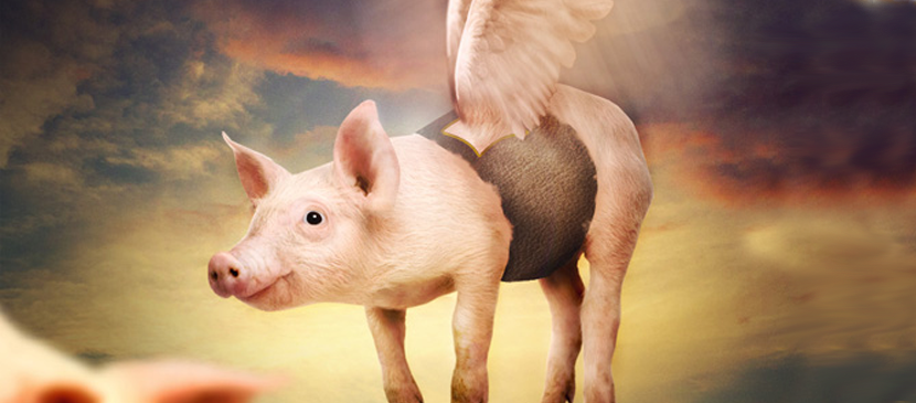Manipulating a Funny Flying Pig Scene