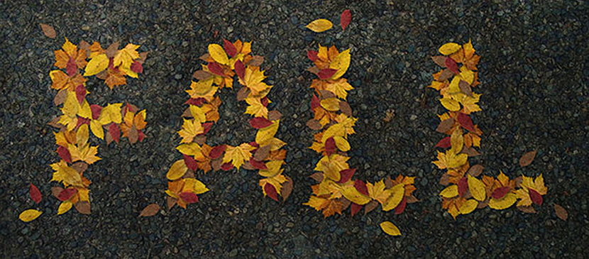 How to Create a Realistic Autumn Leaves Text Effect in Adobe Photoshop
